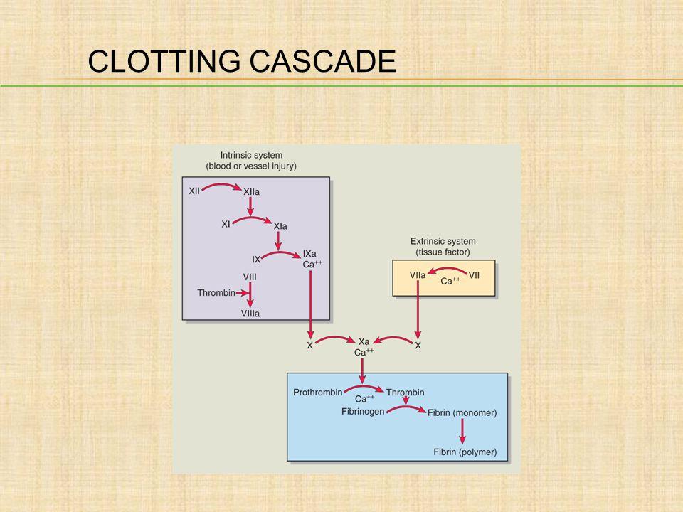 CLOTTING CASCADE Author: Please add title.