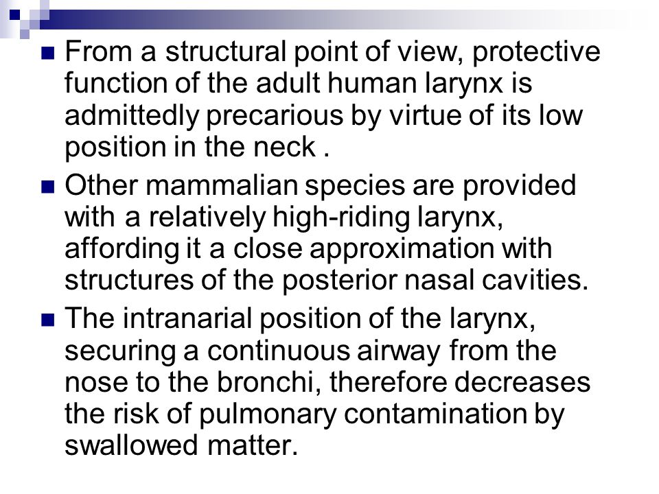 From a structural point of view, protective function of the adult human larynx is admittedly precarious by virtue of its low position in the neck .