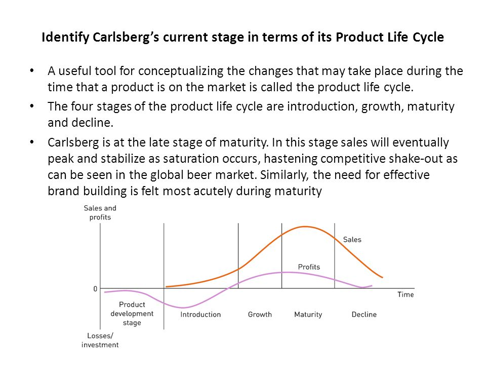 Identify Carlsberg's current stage in terms of its Product Life Cycle