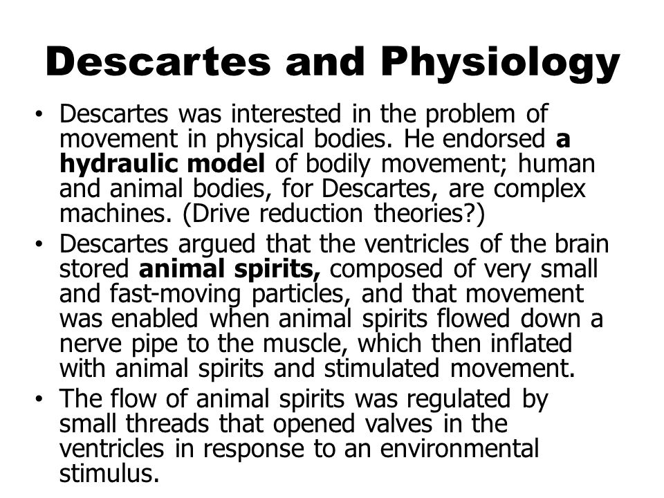 Descartes and Physiology