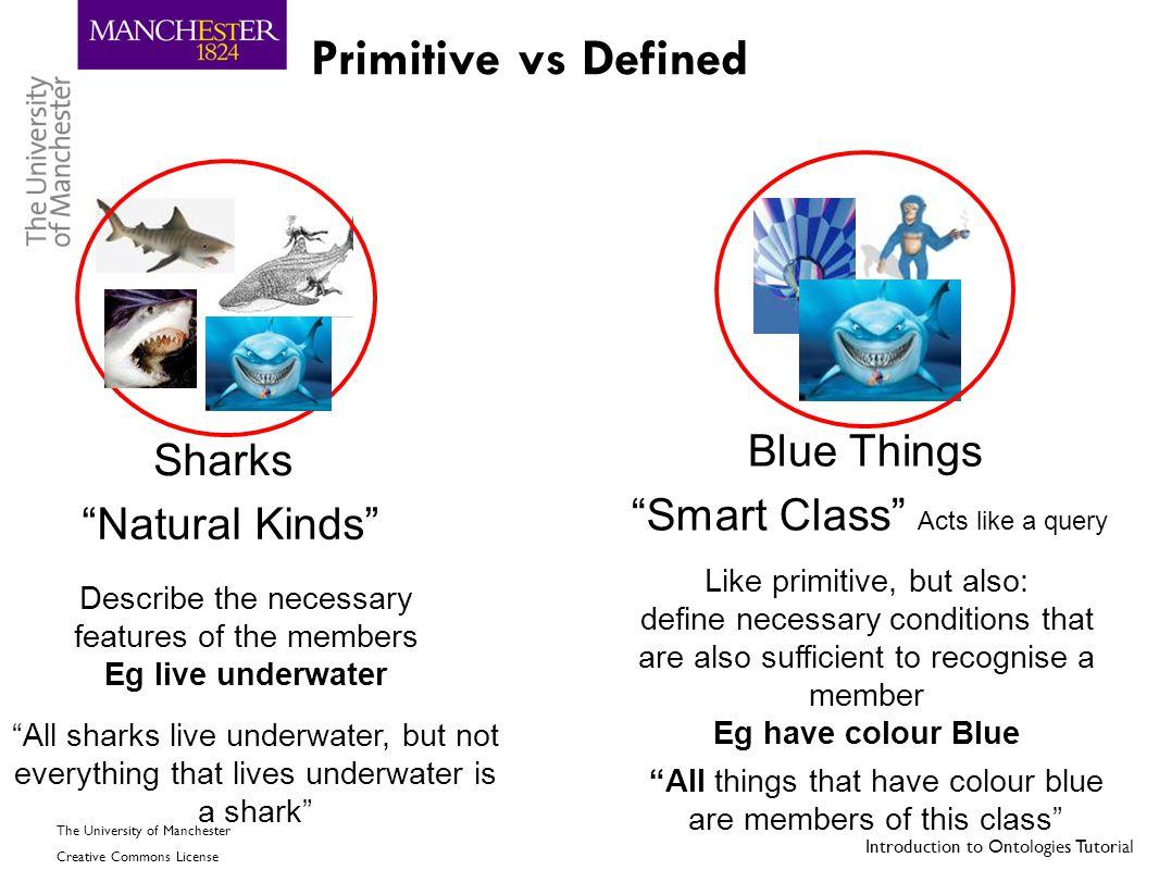 Primitive vs Defined Blue Things Sharks