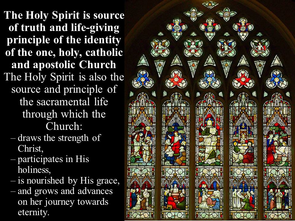The Holy Spirit is source of truth and life-giving principle of the identity of the one, holy, catholic and apostolic Church