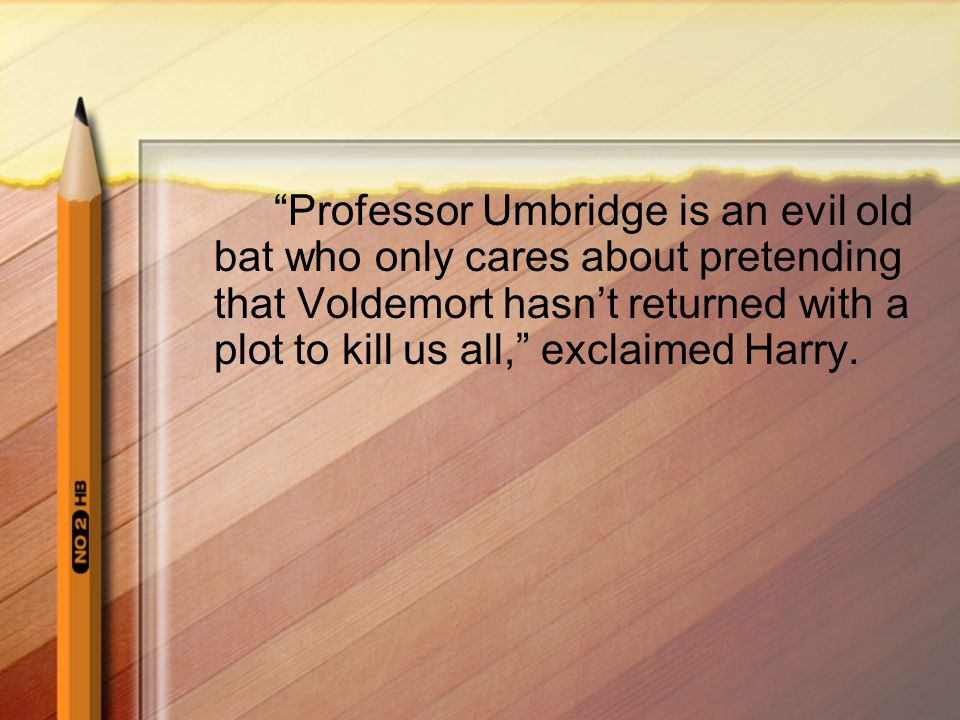 Professor Umbridge is an evil old bat who only cares about pretending that Voldemort hasn't returned with a plot to kill us all, exclaimed Harry.