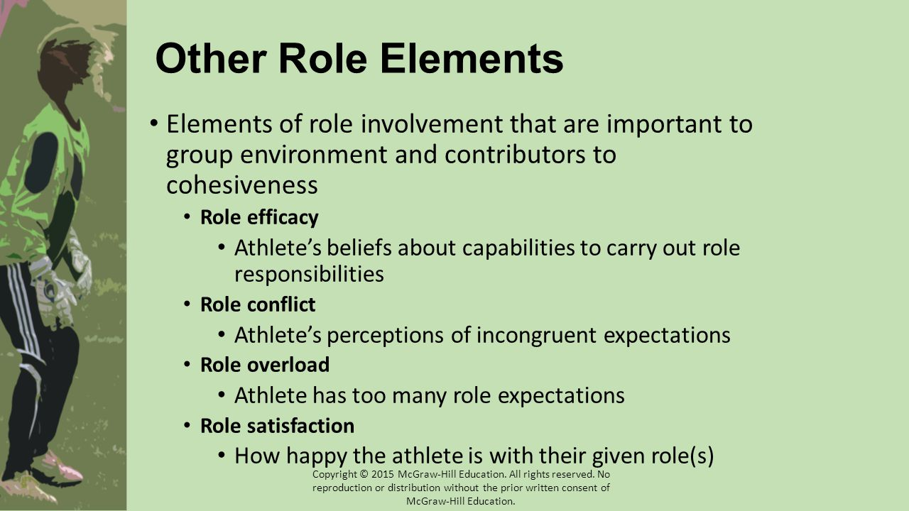 Other Role Elements Elements of role involvement that are important to group environment and contributors to cohesiveness.