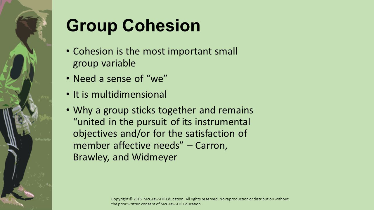 Group Cohesion Cohesion is the most important small group variable