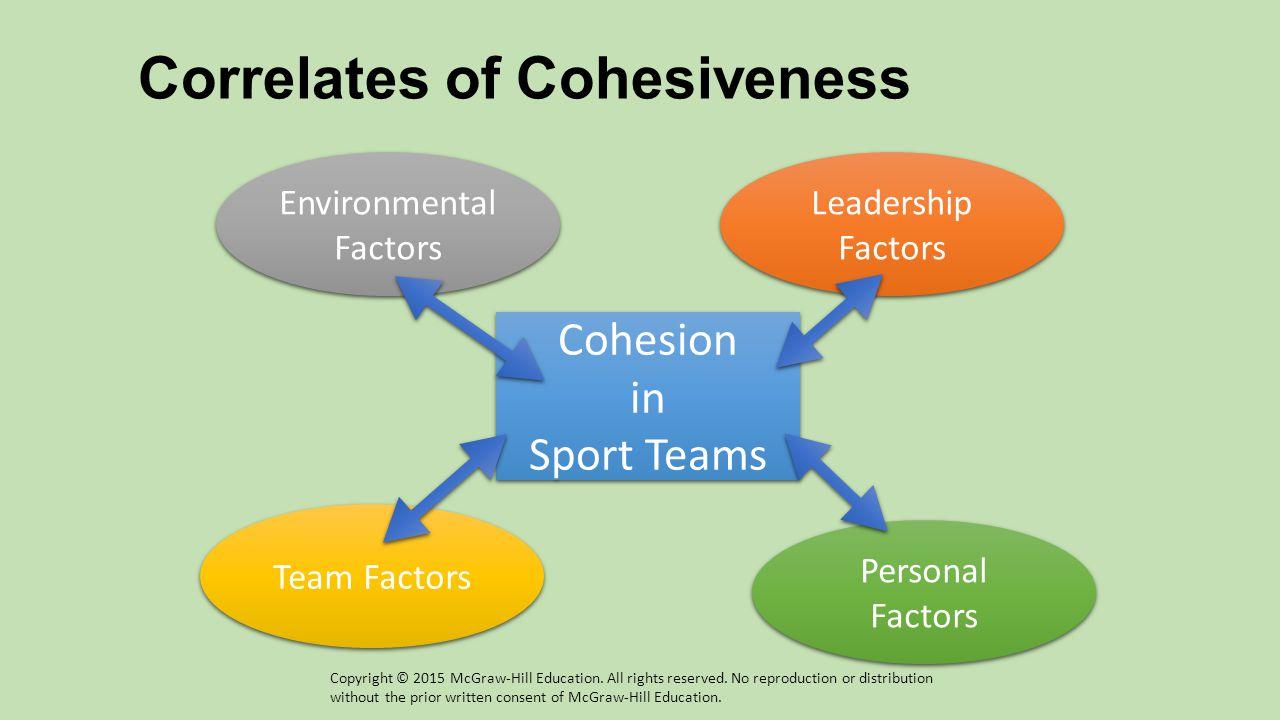 Correlates of Cohesiveness