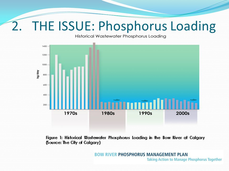 2. THE ISSUE: Phosphorus Loading