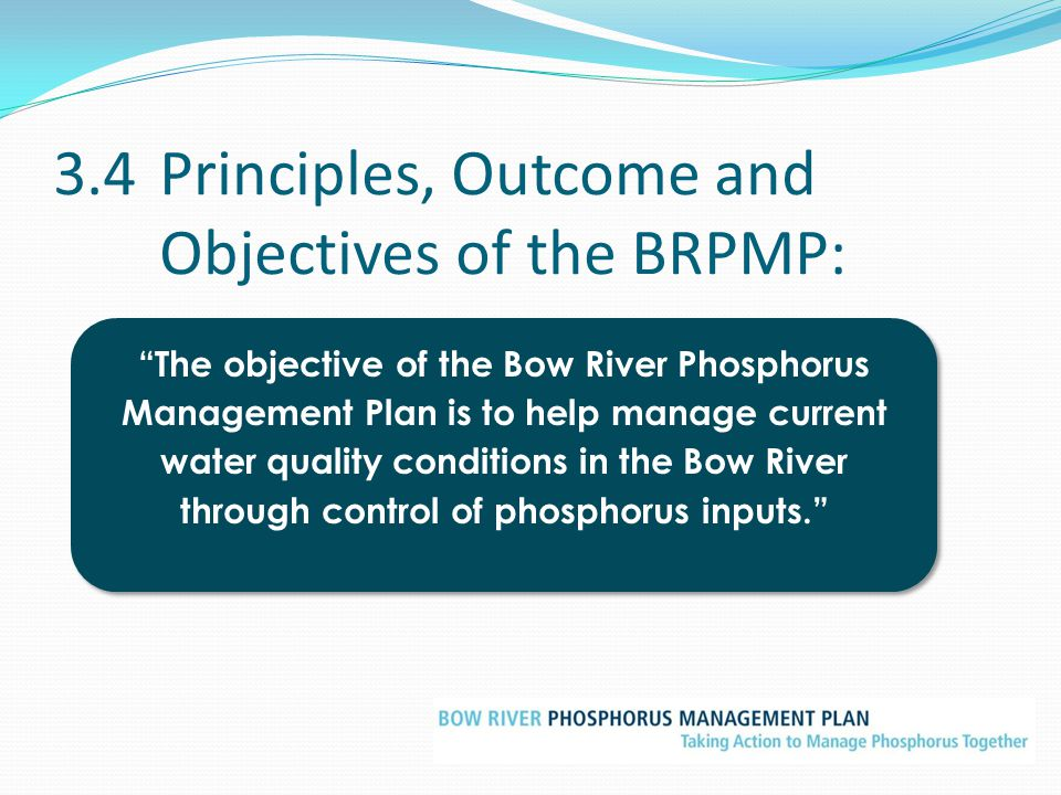 3.4 Principles, Outcome and Objectives of the BRPMP: