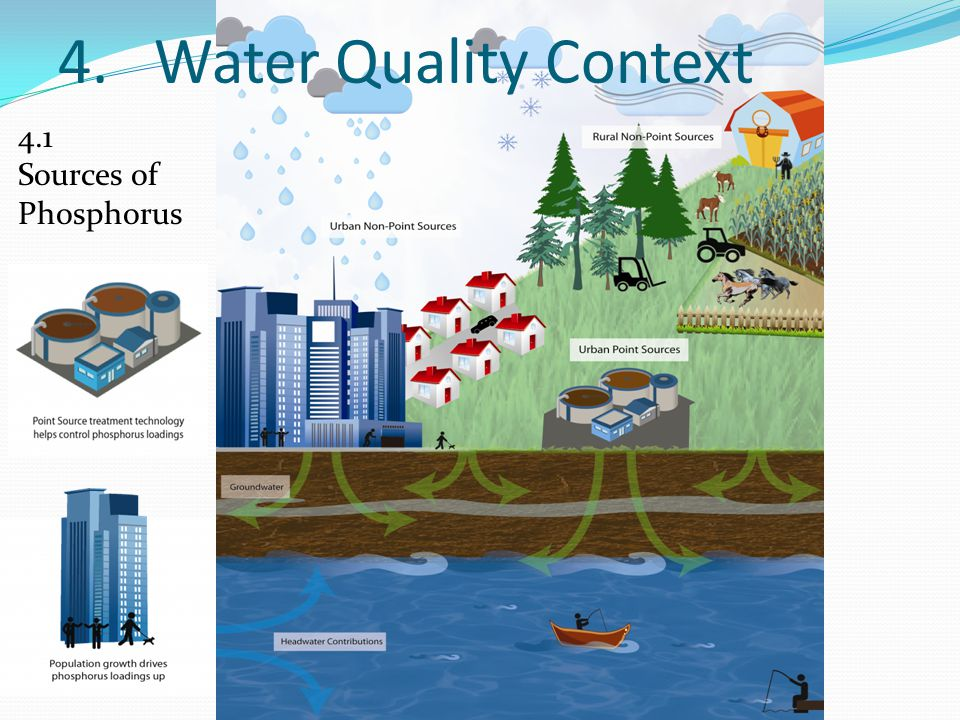 4. Water Quality Context 4.1 Sources of Phosphorus
