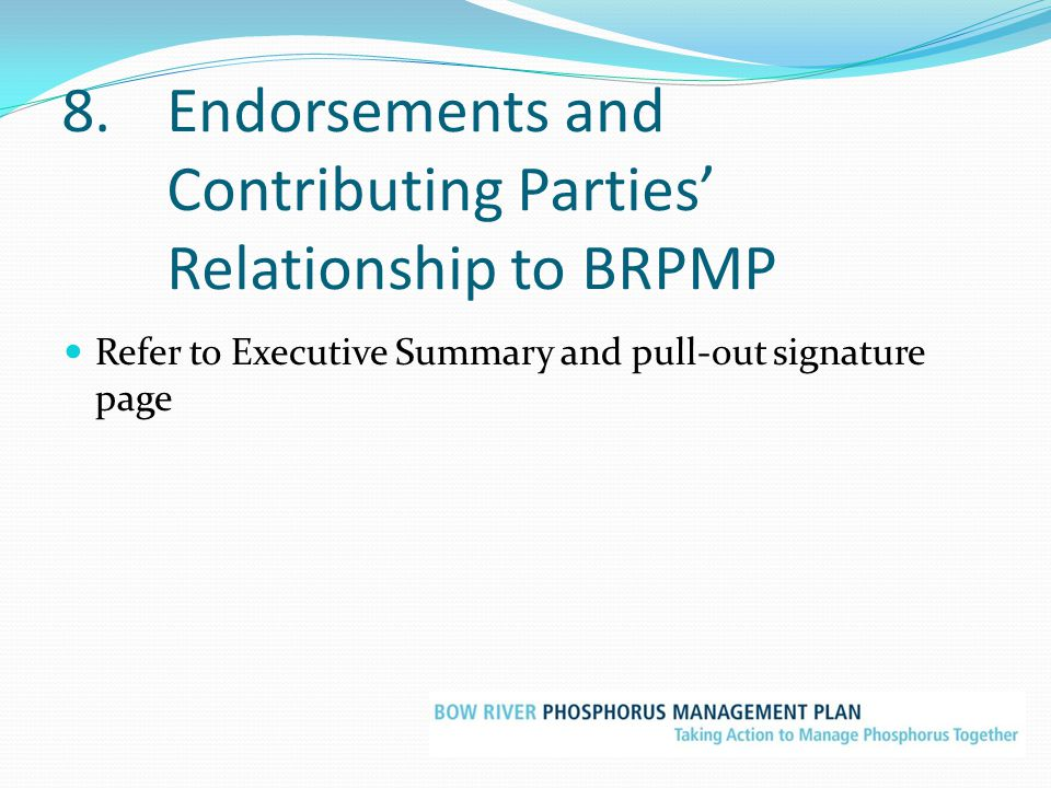 8. Endorsements and Contributing Parties' Relationship to BRPMP