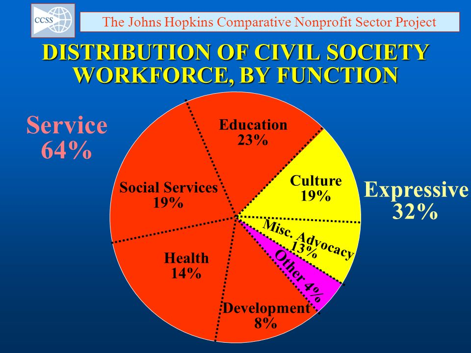 DISTRIBUTION OF CIVIL SOCIETY WORKFORCE, BY FUNCTION