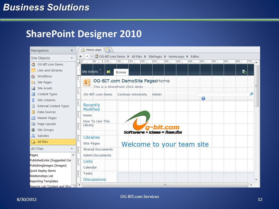 SharePoint Designer 2010 Business Solutions head OG-BIT.com Services