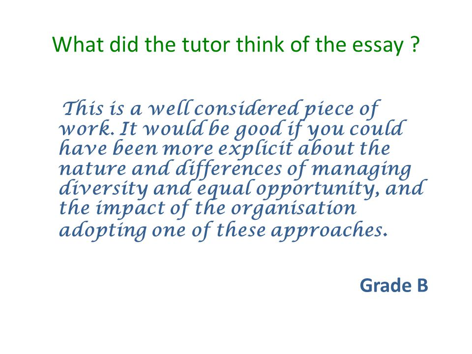 What did the tutor think of the essay