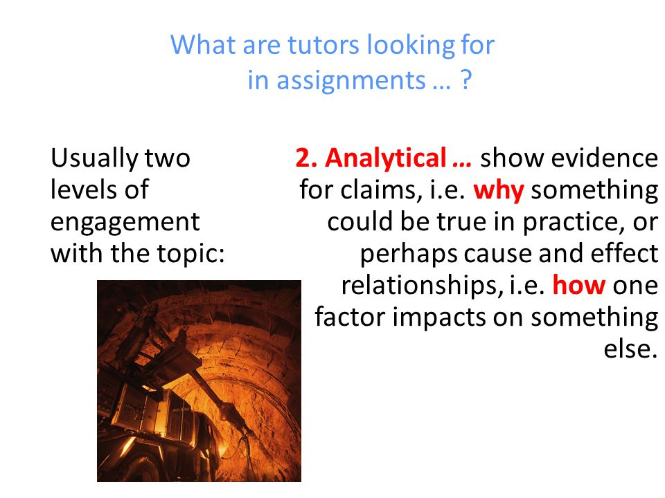 What are tutors looking for in assignments …