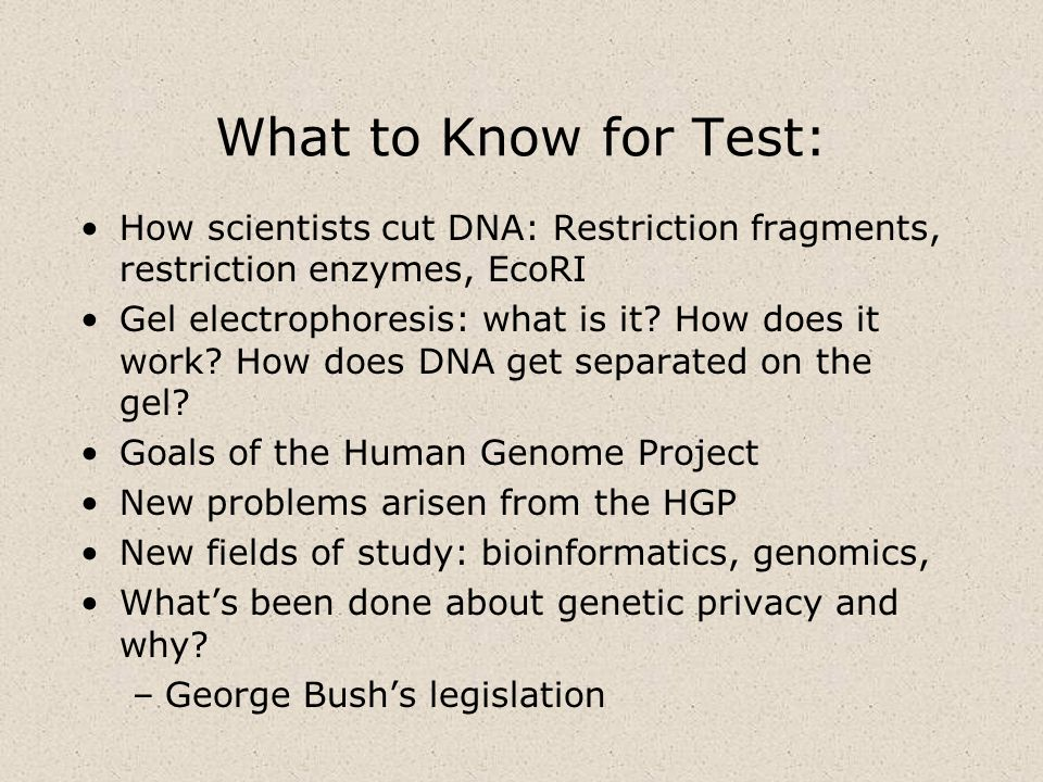 What to Know for Test:How scientists cut DNA: Restriction fragments, restriction enzymes, EcoRI.