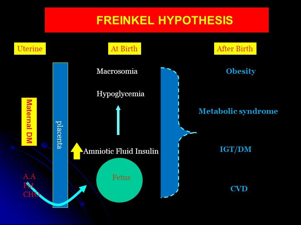 FREINKEL HYPOTHESIS Uterine At Birth After Birth placenta Macrosomia