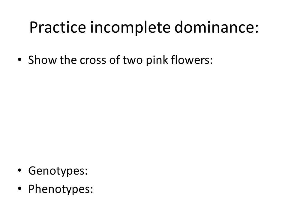 Practice incomplete dominance: