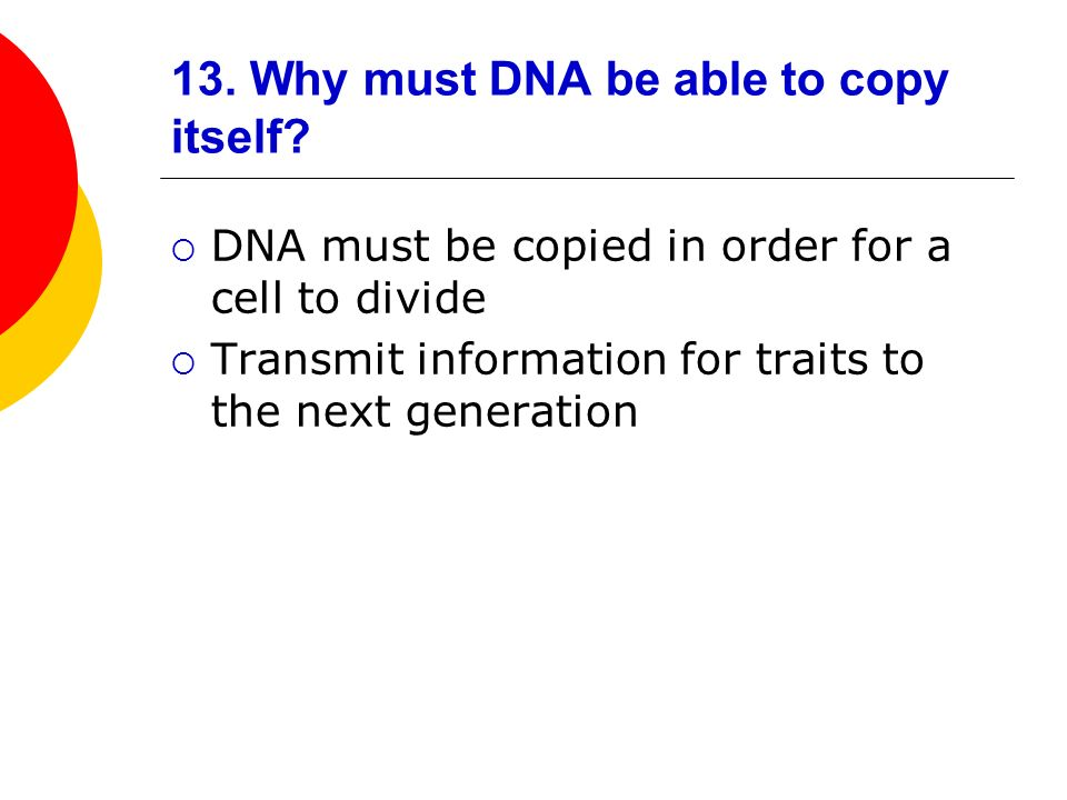 13. Why must DNA be able to copy itself