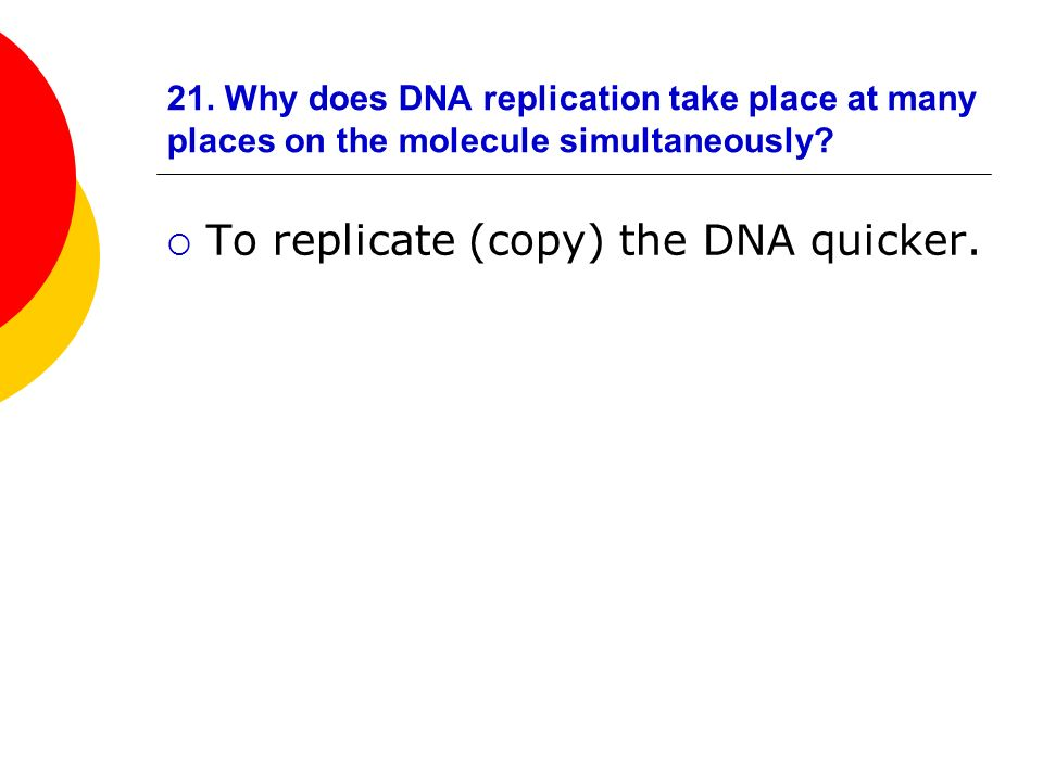To replicate (copy) the DNA quicker.