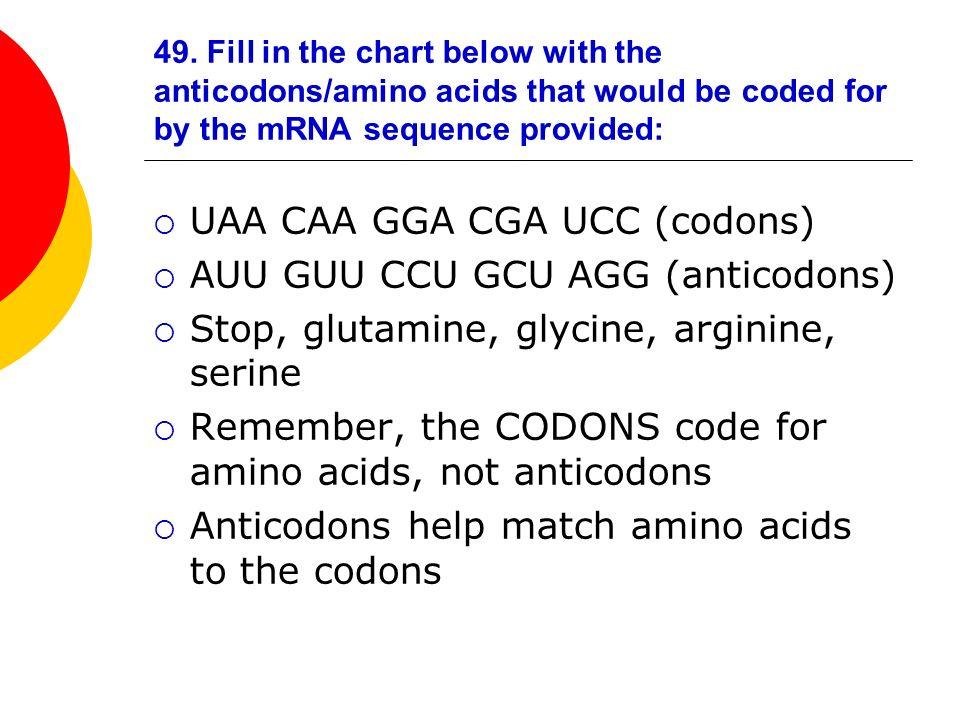 UAA CAA GGA CGA UCC (codons) AUU GUU CCU GCU AGG (anticodons)