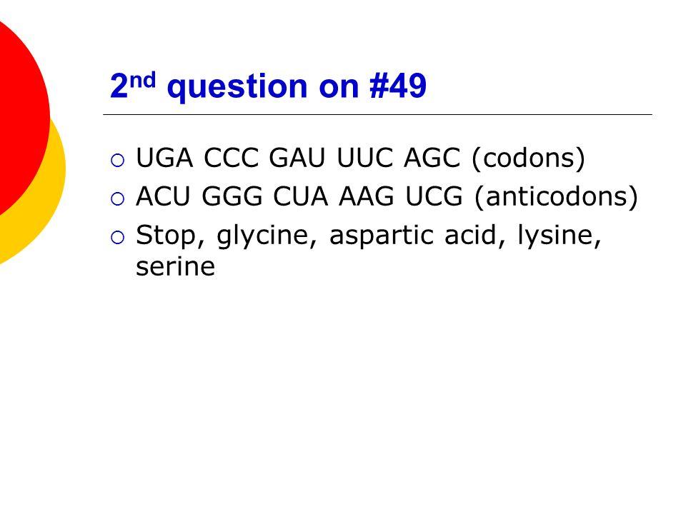 2nd question on #49 UGA CCC GAU UUC AGC (codons)