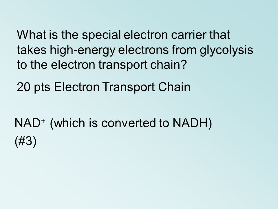 What is the special electron carrier that takes high-energy electrons from glycolysis to the electron transport chain
