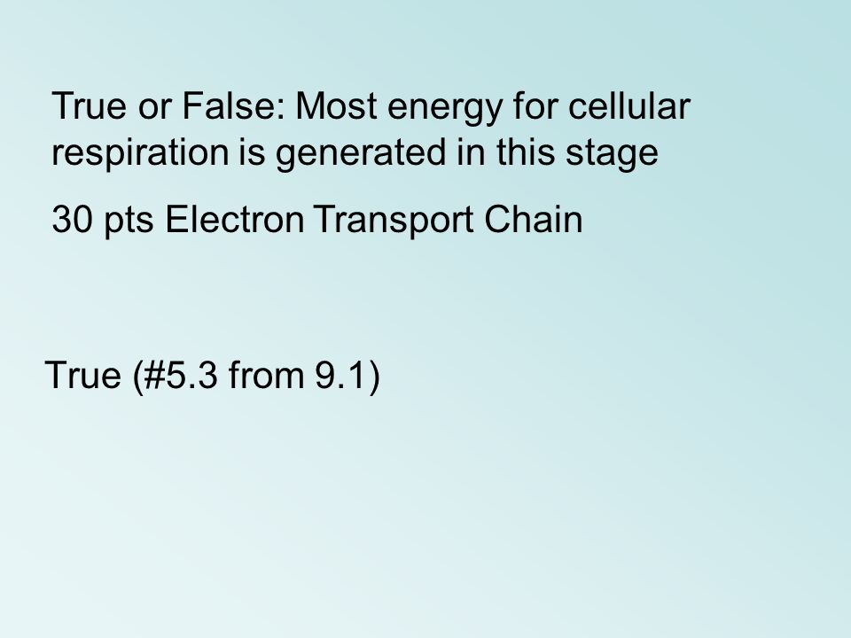 True or False: Most energy for cellular respiration is generated in this stage