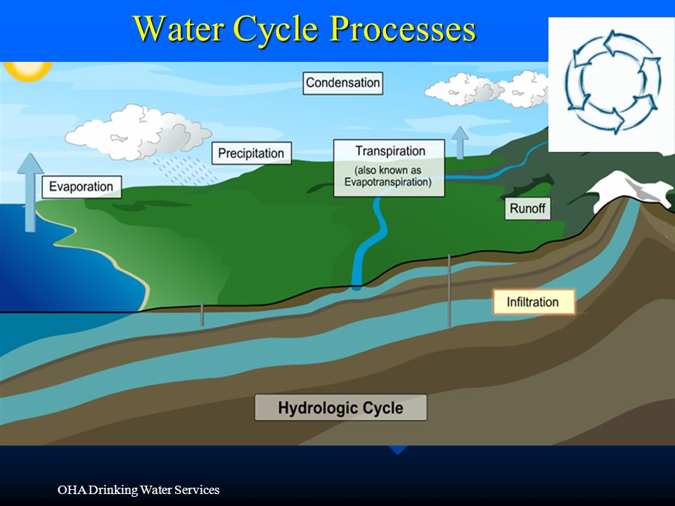 Water Cycle Processes Condensation Precipitation Infiltration Runoff