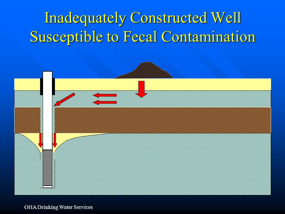 Inadequately Constructed Well Susceptible to Fecal Contamination