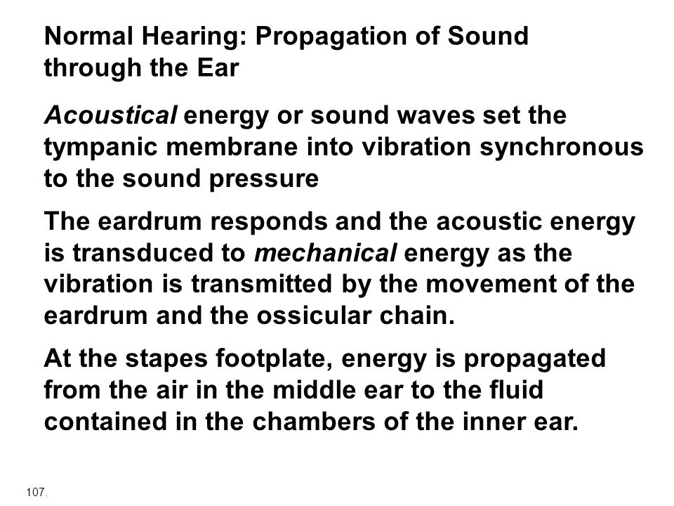 Normal Hearing: Propagation of Sound through the Ear