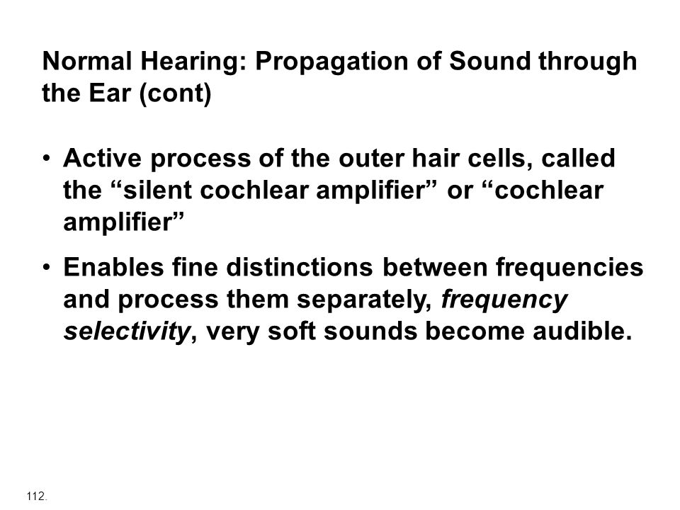 Normal Hearing: Propagation of Sound through