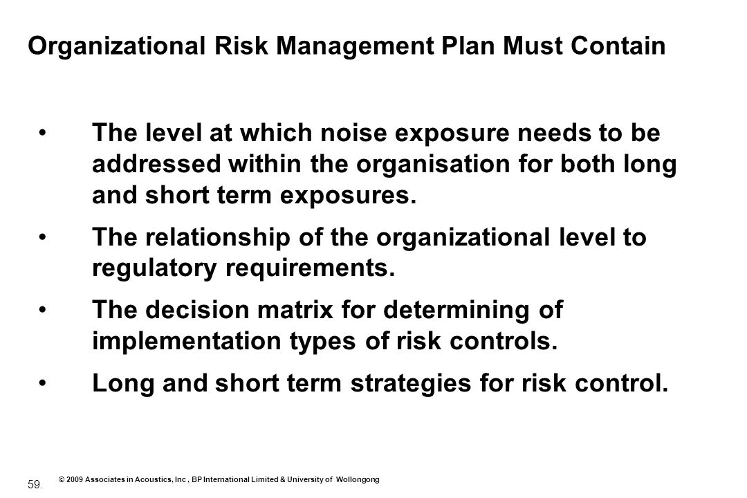 Organizational Risk Management Plan Must Contain