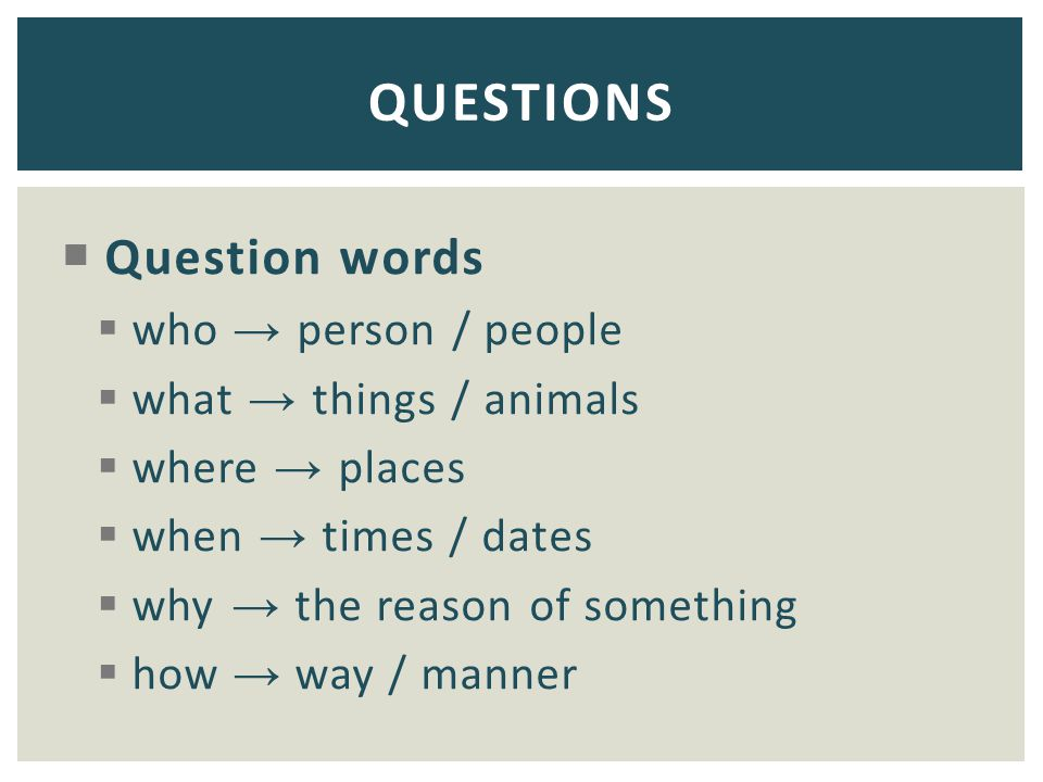QUESTIONS Question words who → person / people what → things / animals