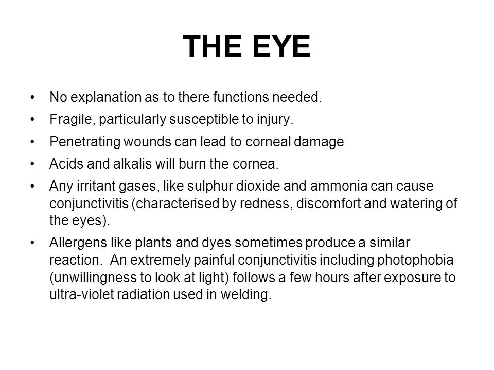 THE EYE No explanation as to there functions needed.