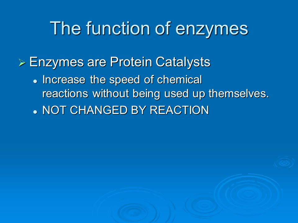 The function of enzymes
