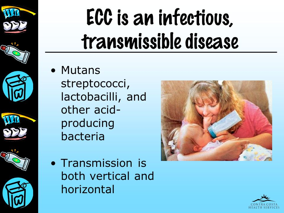 ECC is an infectious, transmissible disease