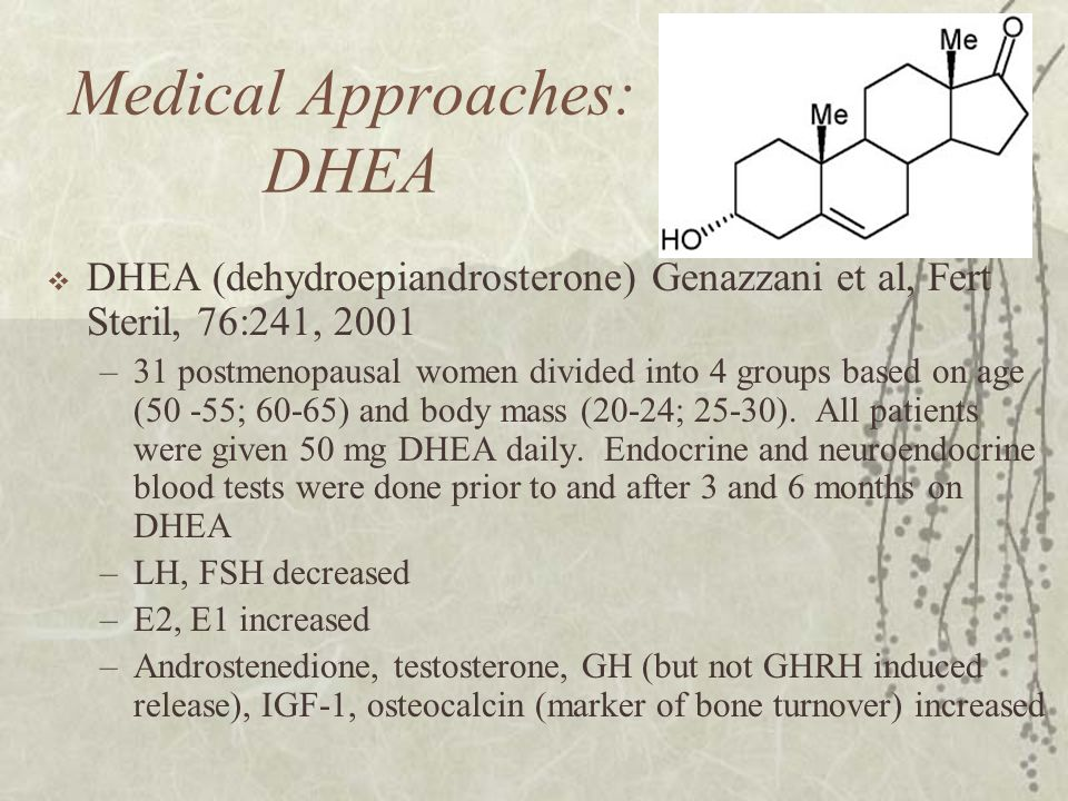 Medical Approaches: DHEA