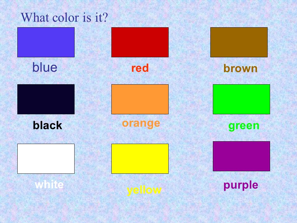 What color is it blue red brown orange black green white purple