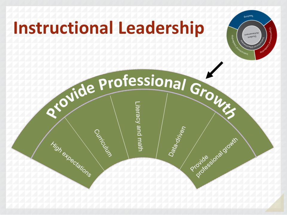 Instructional Leadership Provide Professional Growth