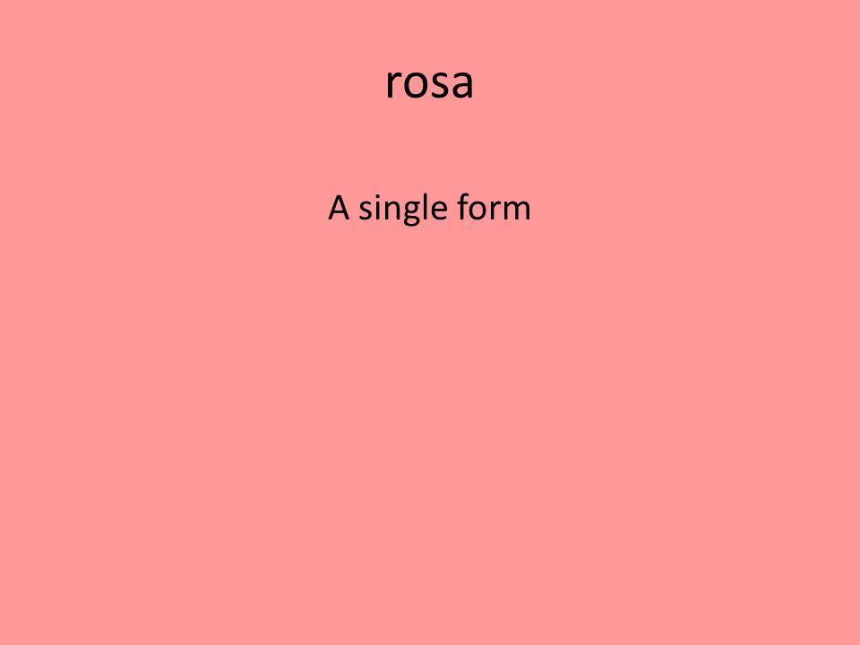 rosa A single form
