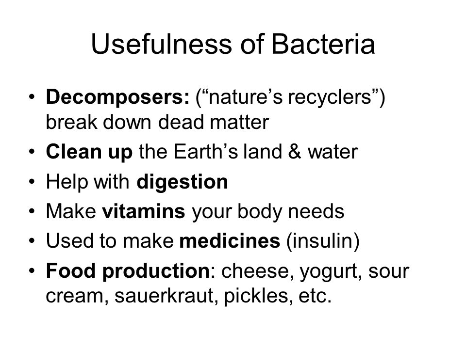 Usefulness of Bacteria