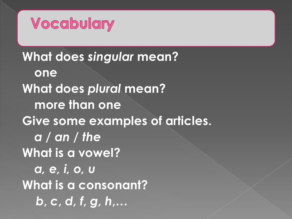 Vocabulary What does singular mean one What does plural mean