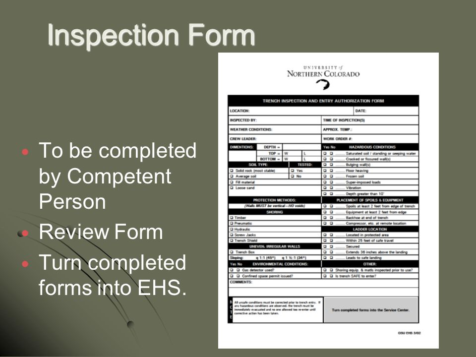 Inspection Form To be completed by Competent Person Review Form