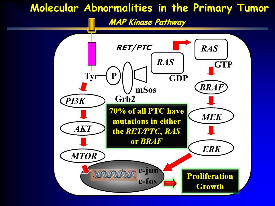 Molecular Abnormalities in the Primary Tumor