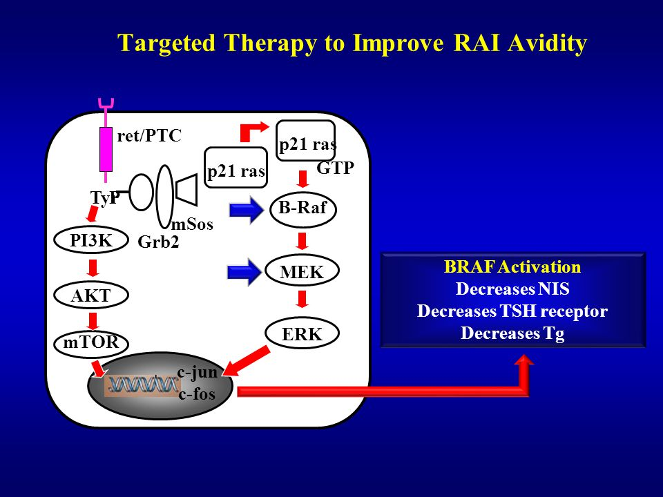 Targeted Therapy to Improve RAI Avidity