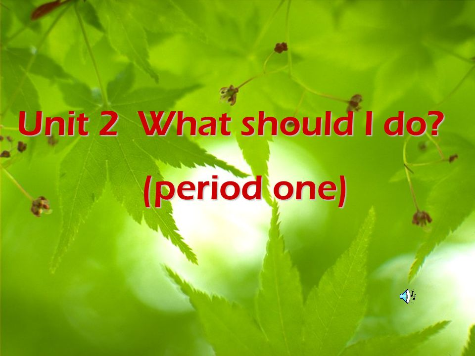Unit 2 What should I do (period one)