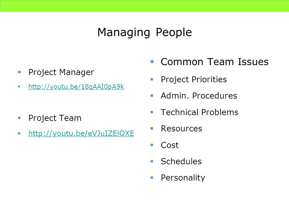 Managing People Common Team Issues Project Manager Project Priorities