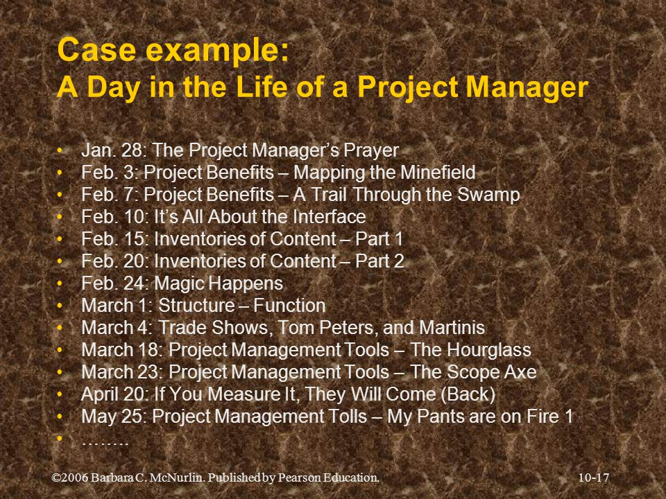 Case example: A Day in the Life of a Project Manager