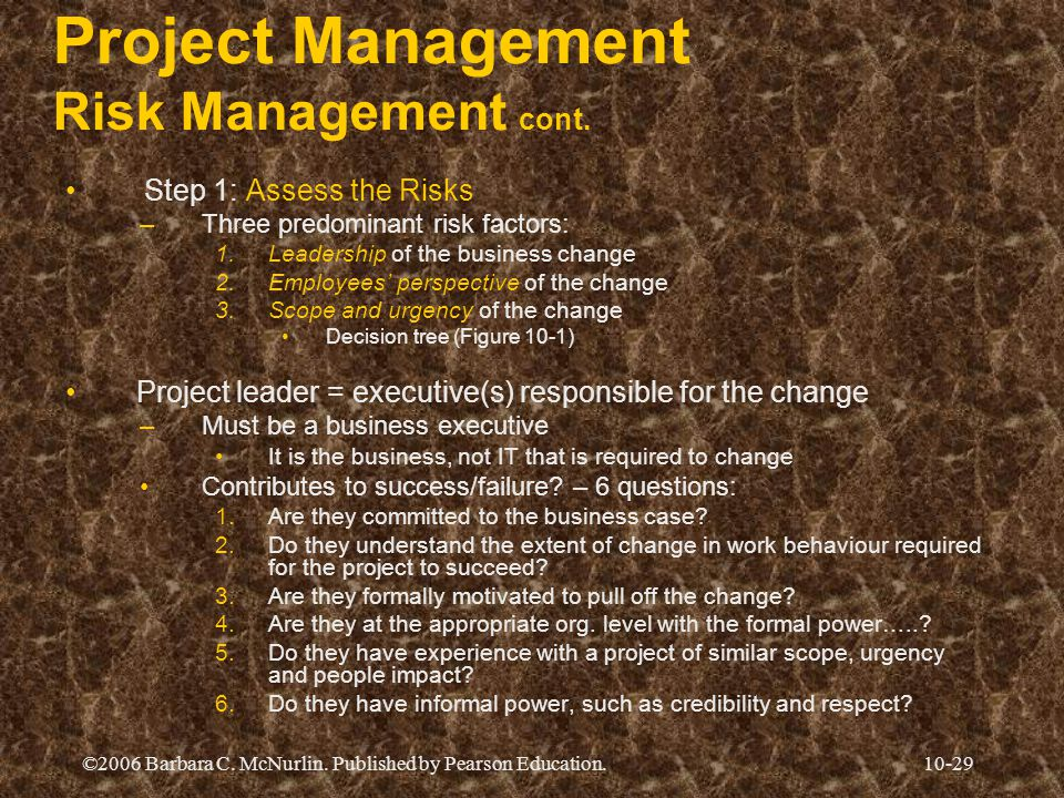 Project Management Risk Management cont.
