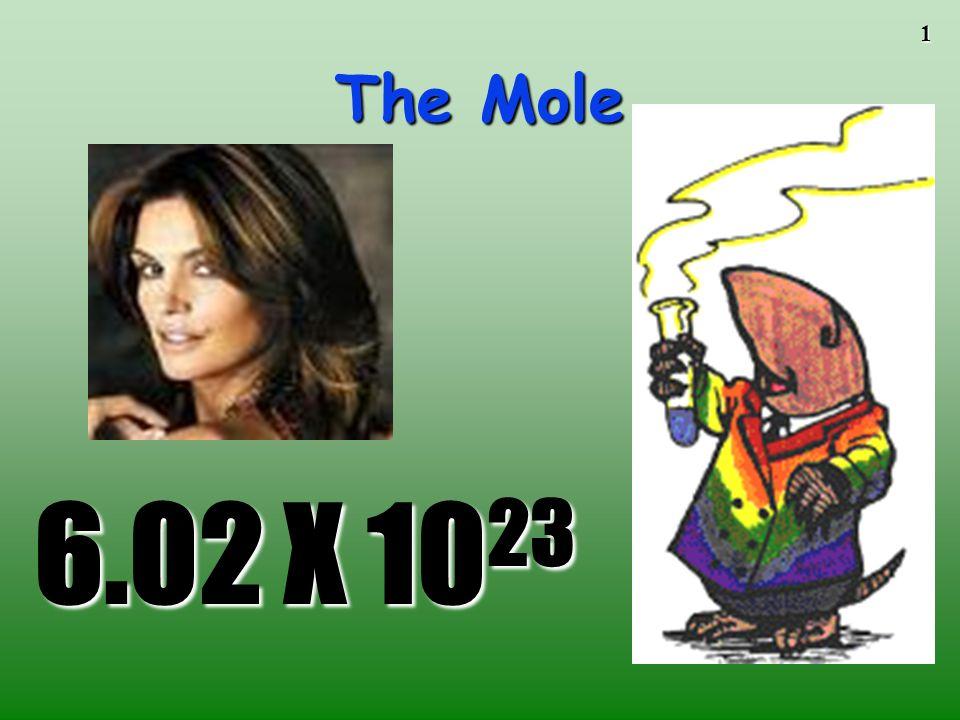 The Mole To play the movies and simulations included, view the presentation in Slide Show Mode.